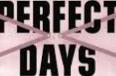 dias perfeitosPequeno2